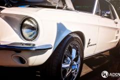 White-Mustang-2